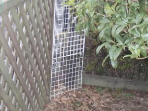 フェンスの補強