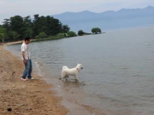琵琶湖に入ったよ
